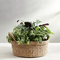 Seagrass Small Round Basket
