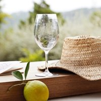 Picnic Large Wine Glass, Clear, One Size
