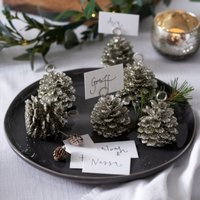 Pinecone Placecard Holders – Set of 6, Silver, One Size