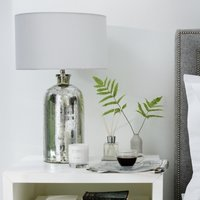 Mercury Large  Bottle Table Lamp, Silver, One Size