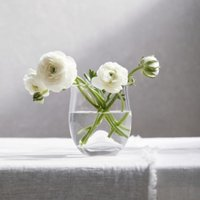 Boston Small Vase, Clear, One Size