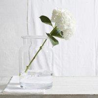 Aurelie Ultimate Vase, Clear, One Size