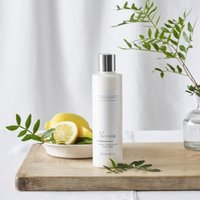 Verveine Body Lotion