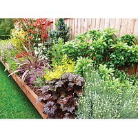 Garden on a Roll Mixed Sunny Plant Border - 600mm x 10m