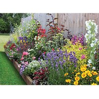 Garden on a Roll Wildlife Plant Border - 900mm x 4m