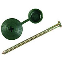 Click to view product details and reviews for Onduline Profile Sheeting Nails 70mm Green Pk100.