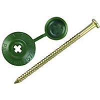Click to view product details and reviews for Ondulines Profile Sheeting Nails 70mm Green Pk20.