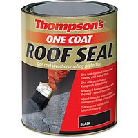 Click to view product details and reviews for Thompsons One Coat Roof Seal Black 5l.