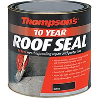 Click to view product details and reviews for Thompsons 10 Year Roof Seal Black 25l.