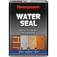 Thompsons Water Seal 5 Litres