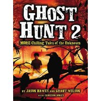 'Ghost Hunt 2