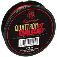 Quantum 0.40mm, 275m, Salsa-Schnur,