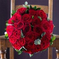 Opulent Red Roses