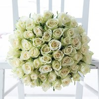 50 White Roses with Bee Mine Rose Gift Set