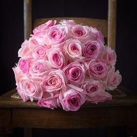 Luxury Sorbet Roses
