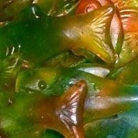 Juicy Fruity Jelly Fish