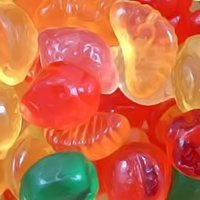 Sugar Free Fruit Salad - Food Gifts