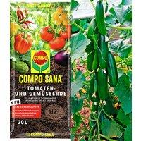 Veredelte Snack-Gurke 'Minik' & COMPO® SANA® Tomaten- und Gemüseerde