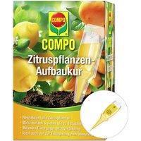 COMPO® Zitruspflanzen-Aufbaukur