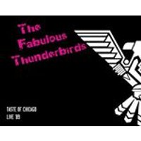 Fabulous Thunderbirds (The) - Taste of Chicago  (Live '89/Live Recording) (Music CD)