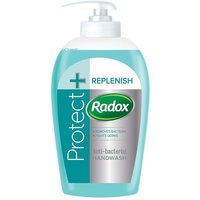 Radox Clean and Protect Handwash
