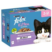 Felix Pouch Kitten In Jelly 12x100g