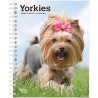 Yorkies A5 Diary 2019 - 2020 - Dogs Gifts