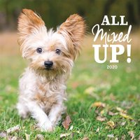 All Mixed Up! Calendar 2020 - Dogs Gifts