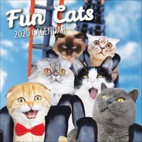 Fun Cats Calendar 2020 - Fun Gifts