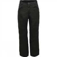 Dare2b Apprise Mens Pant - S Black