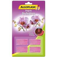 ALGOFLASH Engrais Orchidées - 20 bâtonnets
