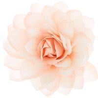 Claire's Large Glitter Flower Hair Clip - Blush Pink - Glitter Gifts