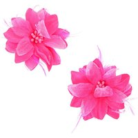 Claire's Fuchsia Flower Clips - 2 Pack - Fuchsia Gifts