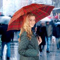 Navy Windproof Umbrella