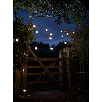 Festoon Lights - Starter Kit