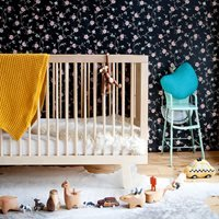 Product photograph showing Oeuf Sparrow Cot Bed In Birch