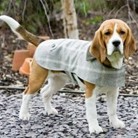 Tweed Dog Coat in Slate Tweed Design - Large