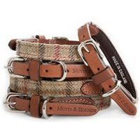 Product photograph showing Designer Dog Collar In Balmoral Check Tweed - Tiny