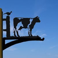 Hanging Basket Bracket in Buttercup Cow Design - Small