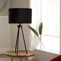 Product photograph showing Pacific Lifestyle Houston Table Lamp