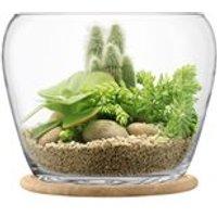 LSA Plant Giant Pot with Oak Base
