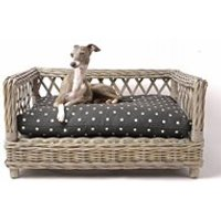 Raised Rattan Dog Bed with Dotty Charcoal Mattress - Medium