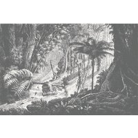 Amazonia Wall Mural (colour: Monochrome, size: Small (150w x 300h))