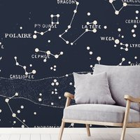 Polaire Wall Mural (colour: Blue, size: Large (450w x 300h))