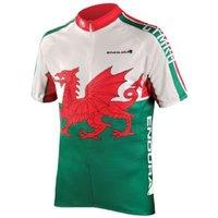 Endura Coolmax Printed Wales Jersey 2