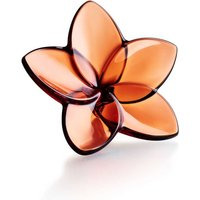 Baccarat The Bloom Collection Mahogany Bloom | 2813015 - Decorations Gifts