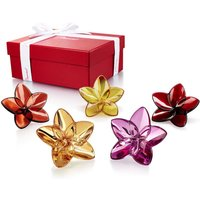 Baccarat The Bloom Collection Flower Power | 2813032 - Decorations Gifts