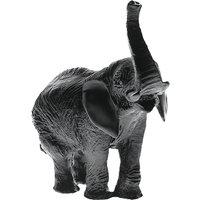 Daum Black Elephant - Animals Gifts