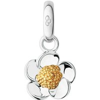 Links of London Nature Keepsakes Sterling Silver Buttercup Charm | 5030.2301 - Keepsakes Gifts