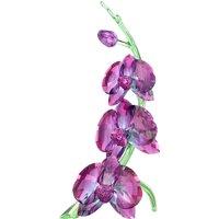 Swarovski Orchids | 5243561